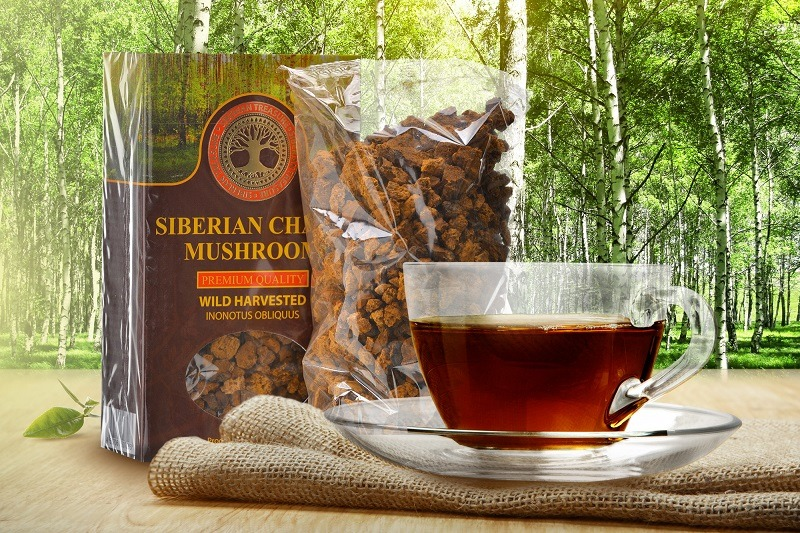 The Benefits of Siberian Chaga Mushroom