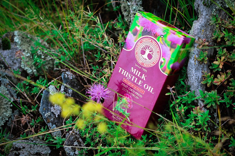 Milk Thistle Oil: a goldmine of vitamins